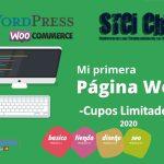 Curso Practico Mi Pagina Web en WordPress 2020