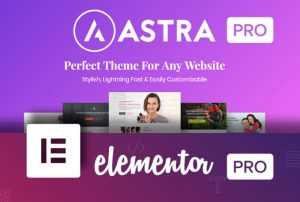 Astra Pro WordPress Theme & Addons Premium Sites
